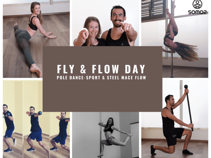 Fly & Flow – Pole Dance – Sport & Steel Mace Flow Day